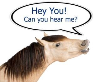 Leadership Horse-ism* – Ineffective Communication Can Kill You – Literally