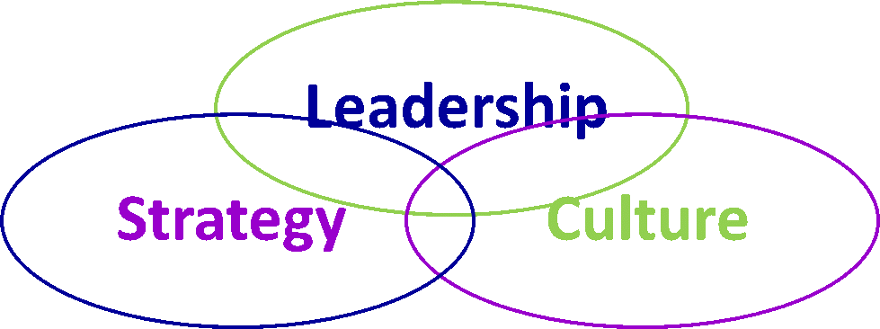 defining and assessing true leadership In many movies, the leader is defined only by their vision and direction little is  said about how a leader generates or rewards alignment and.